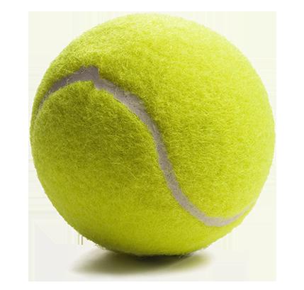 Willows Tennis Club | Willows Tennis Club